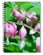 The Romance Flower Spiral Notebook