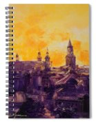 The Roofs Of Lublin Spiral Notebook