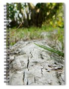 The Root Of Happiness Spiral Notebook