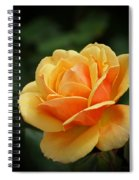 The Rose 1 Spiral Notebook