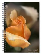 The Rose Bud Spiral Notebook
