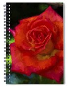 The Rose Spiral Notebook