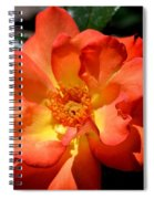 The Rose Of Joy Spiral Notebook