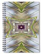 The Sacred Pine Mandala Yantra Spiral Notebook