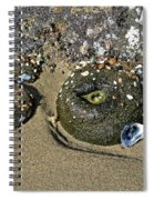 The Sand Box Spiral Notebook