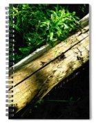 The Sapling Spiral Notebook