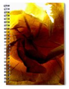 The Scorched Rose Spiral Notebook