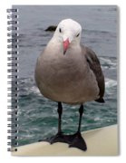 The Seagull 2 Spiral Notebook
