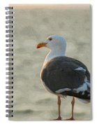 The Seagull Spiral Notebook