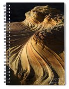 The Second Wave Arizona 4 Spiral Notebook