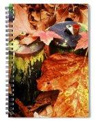 The Secret Of Fall Spiral Notebook