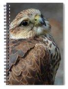 The Seductress Spiral Notebook