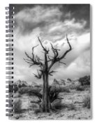 The Sentinal South Coyote Buttes Spiral Notebook