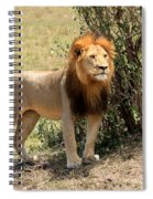 King Of The Savannah Spiral Notebook