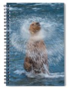 The Shake Spiral Notebook