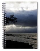 The Silver Lining Spiral Notebook