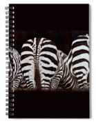 The Sisters Spiral Notebook
