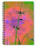 The Skimmer And The Whitetail Art #1 Spiral Notebook
