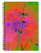 The Skimmer And The Whitetail Art #2 Spiral Notebook
