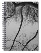 The Sky Is Falling Spiral Notebook