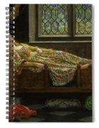 The Sleeping Beauty Spiral Notebook