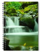 The Small Water Spiral Notebook