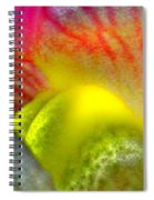 The Snapdragon - Flower Spiral Notebook