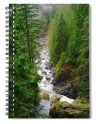 The Snowqualmie River Spiral Notebook