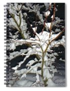 The Snowy Tree II Spiral Notebook