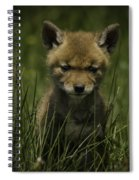 The Softer Side Of Nature Spiral Notebook