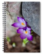The Softness Of Crocus - Flowers - Spring Spiral Notebook