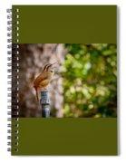 The Songbird Spiral Notebook