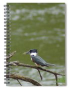 The Southern Kingfisher Side View Spiral Notebook