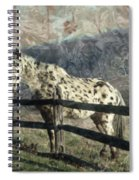 The Speckled Horse Spiral Notebook