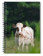 The Spotted Cow Spiral Notebook