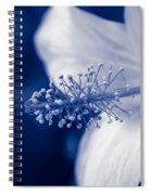 The Spring Wind Whisper Spiral Notebook