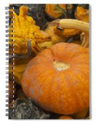 The Squash Harvest Spiral Notebook