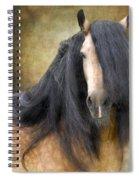 The Stallion Spiral Notebook
