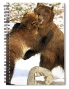The Stand Off Spiral Notebook