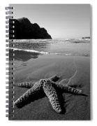 The Starfish Spiral Notebook