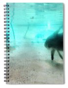 The Storyteller - A Fish Tale By Sharon Cummings Spiral Notebook