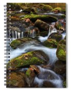 The Stream Spiral Notebook