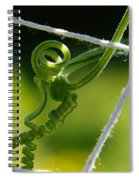 The Stretch Spiral Notebook