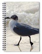 The Strut Spiral Notebook