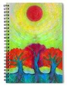The Sun Three Spiral Notebook