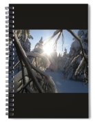 The Sun Through Snowy Branches Spiral Notebook