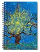 The Sun Tree Spiral Notebook