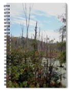 The Swamp Spiral Notebook