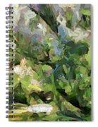 The Swamp - Wetlands Spiral Notebook