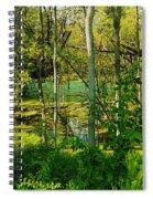 The Swamp Spiral Notebook